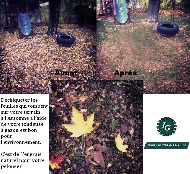 Déchiqueter les feuilles à l'Automne…