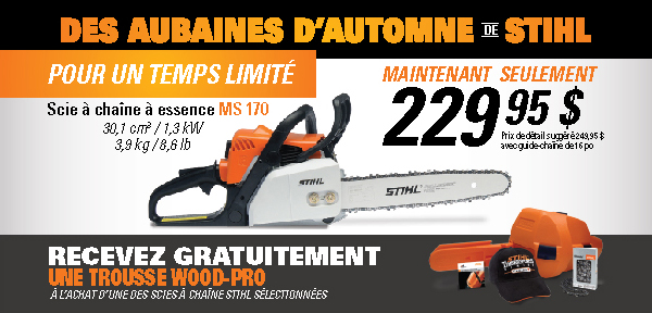Stihl discount coupons