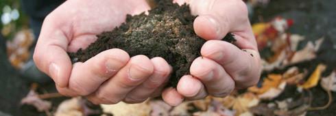 10 règles pour un bon compost