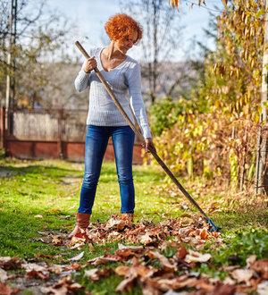 Nettoyage du terrain à l'automne | Équipe Bérubé